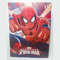 SPIDERMAN AFICHE REGALO