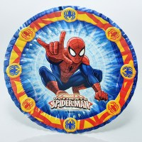 SPIDERMAN PLATO6